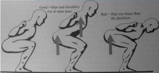 squat215