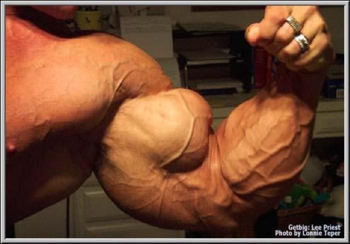 Как растут ваши мышцы и что нужно чтобы мышцы росли