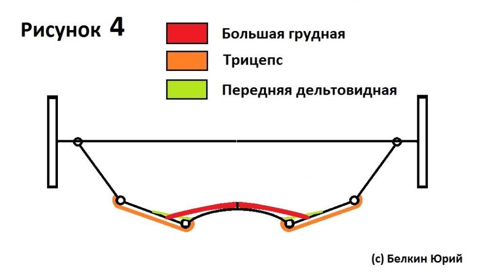 Причины возникновения мертвых точек в жиме штанги лежа 4